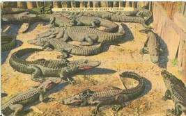 An Alligator Farm in Sunny Florida, 1938 used linen Postcard  - $4.99