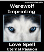 Quantum Werewolf Imprinting Love Spell Obsesson & Sex Appeal BetweenAllW... - $159.00