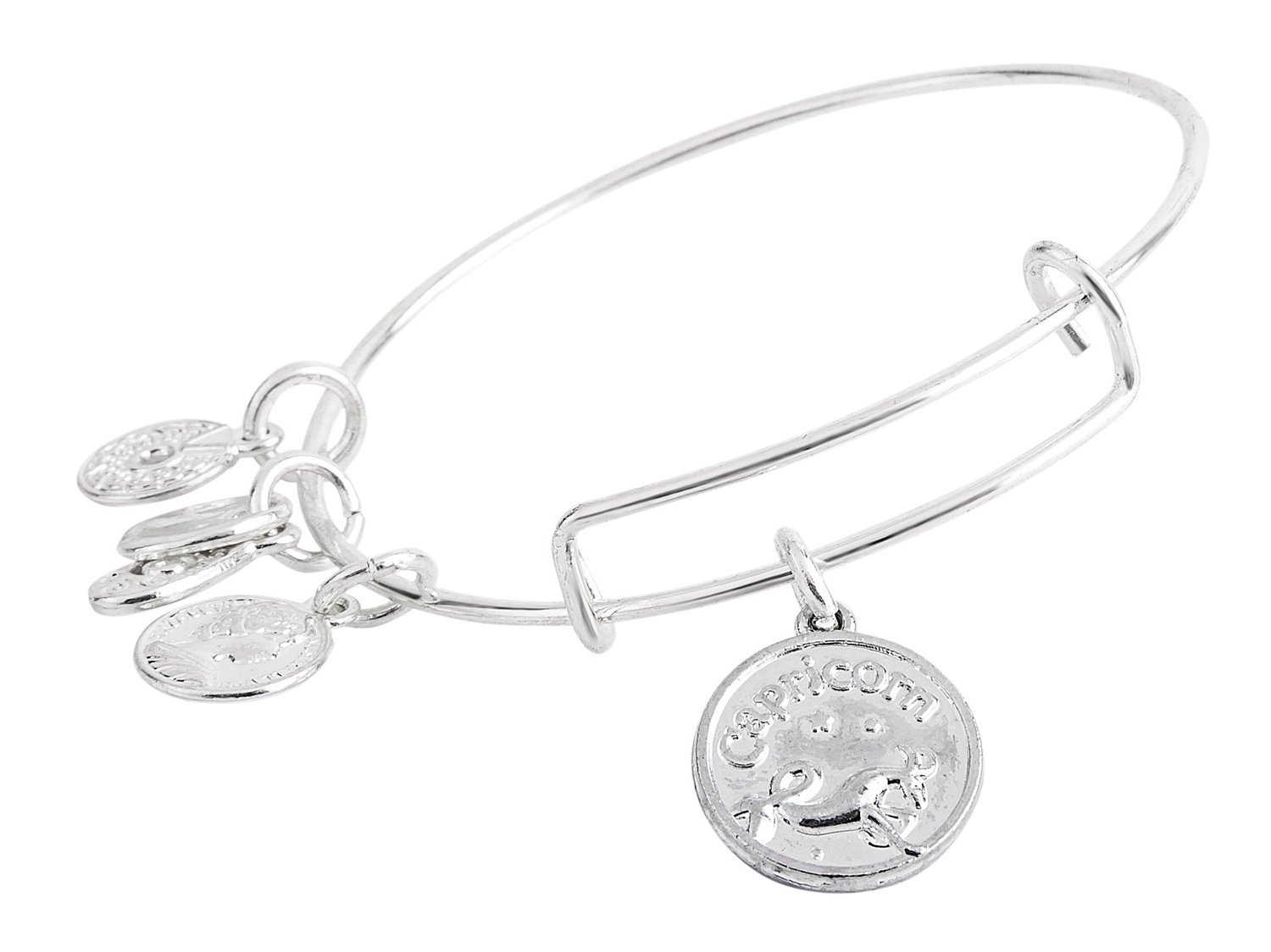 Capricorn Pendant Bangle Expandable Bracelet Shiny Silver Tone
