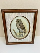 Vintage Owl Framed Art by E. Rambow - $25.73