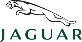New Oem Jaguar 06-08 S-Type Xf Radiator Recovery Tank Overflow Hose XR849185 - $15.76