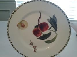 "Hooker's Fruit 10 7/8"" Porcelain Peach Dinner Plate, Rosina Queens China... - $7.99"
