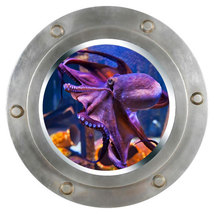 Octopus Porthole Wall Sticker,Wall decal, remov... - $10.99