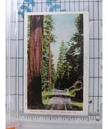 Early 1900s Big Tree Station, Southern Pacific Railroad, Santa Cruz, CA ... - $11.75