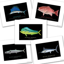 Sailfish Red Snapper Mahi Mahi Mackerel Marlin Fish Designs Five Photo Prints - $24.70