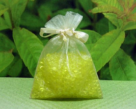 Lemon Verbena Aroma Bead Sachets (Set of 2)  GR... - $6.00
