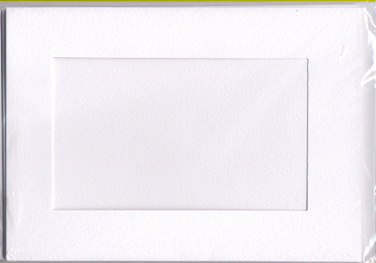 5538 white large rect needlework card
