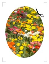 Flower Coaster4-Download-ClipArt-ArtClip-Digital-Coaster - $4.00