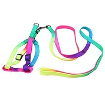 NACOCO Colorful Adjustable Polyseter Pet Dog Harness Leash Rope [Misc.] - $9.99