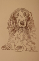 Longhaired Dachshund Dog Art #48 Kline WORD DRA... - $49.45