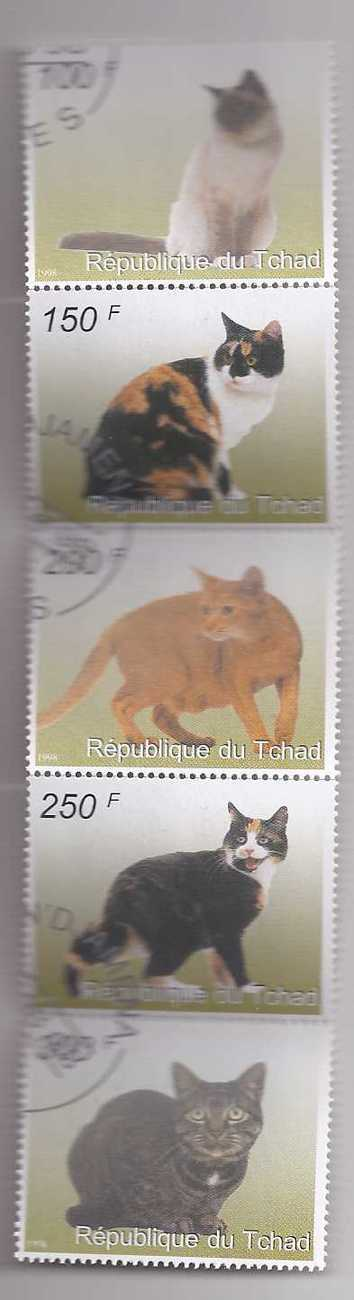 Stamps 5 cats