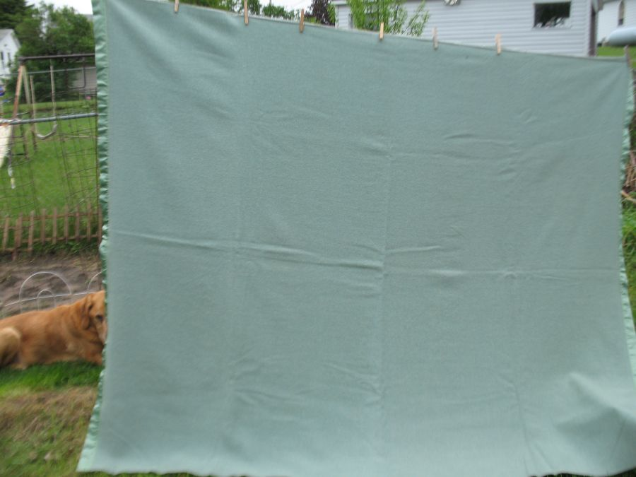 Vintage Pendleton Virgin Wool Seafoam green Winter blanket Full Qn Woolen Mills