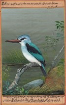 Woodland Kingfisher Bird Miniature Art Handmade Wild Life Ornithology Pa... - $104.99