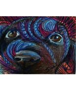 originial ACEO drawing black lab puppy zentangle design - $9.99