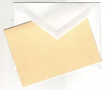 5372 ivory blank needlework card