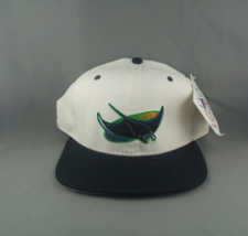 Tampa Bay Devil Rays Hat (VTG) - By New Era - Adult Snapback - New with Tags - $79.00