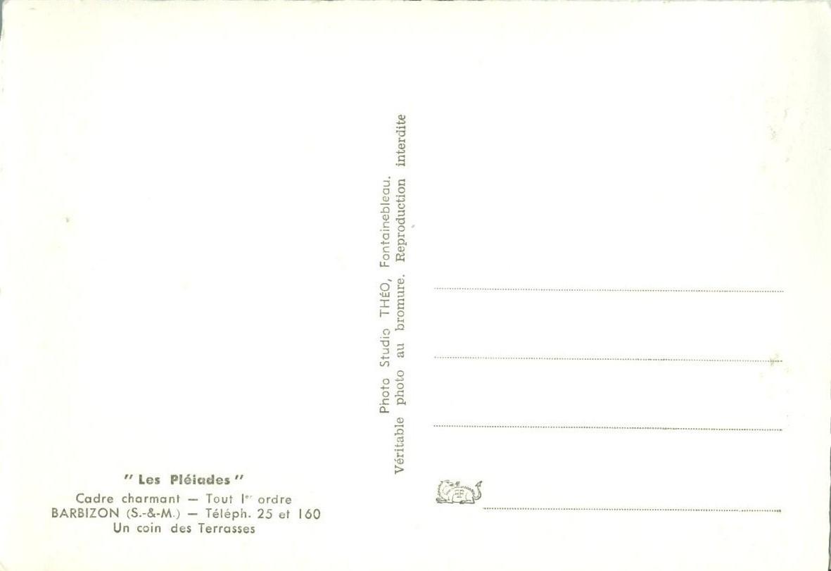 France, Les Pleiades, Barbizon, Un coin des Terrasses Real Photo unused Postcard