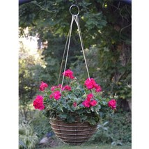 Stainless Steel Basket and Liner Set (3 Sizes Available) - €33,52 EUR+