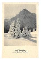 RPPC Christmas Frohe Weihnachten Snow Fir Trees Tirol Austria 1954 Postcard - $4.99
