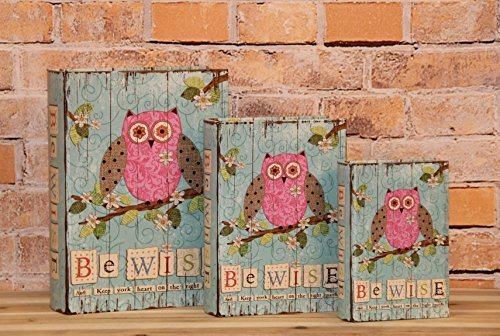 "Primary image for ""Be Wise And Keep Your Heart On The Right Path"" Decorative Book Boxes Diversion"