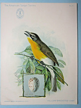 American Singer Sewing Machine Bird card, No.15,Yellow Breast Chat, Antique-1899 - $3.95