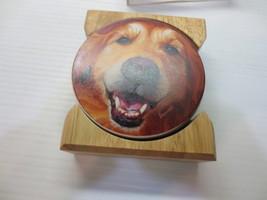 CounterArt Golden Retriever - Round Coaster Gift Set With Wood Holder  - $10.99