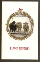 Fleece Navidad Sheep in Festive Christmas Wreath Photo Christmas Card B4... - $5.00
