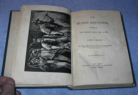 The Blind Brother ca 1887 Homer Greene Young Adult Fiction Book