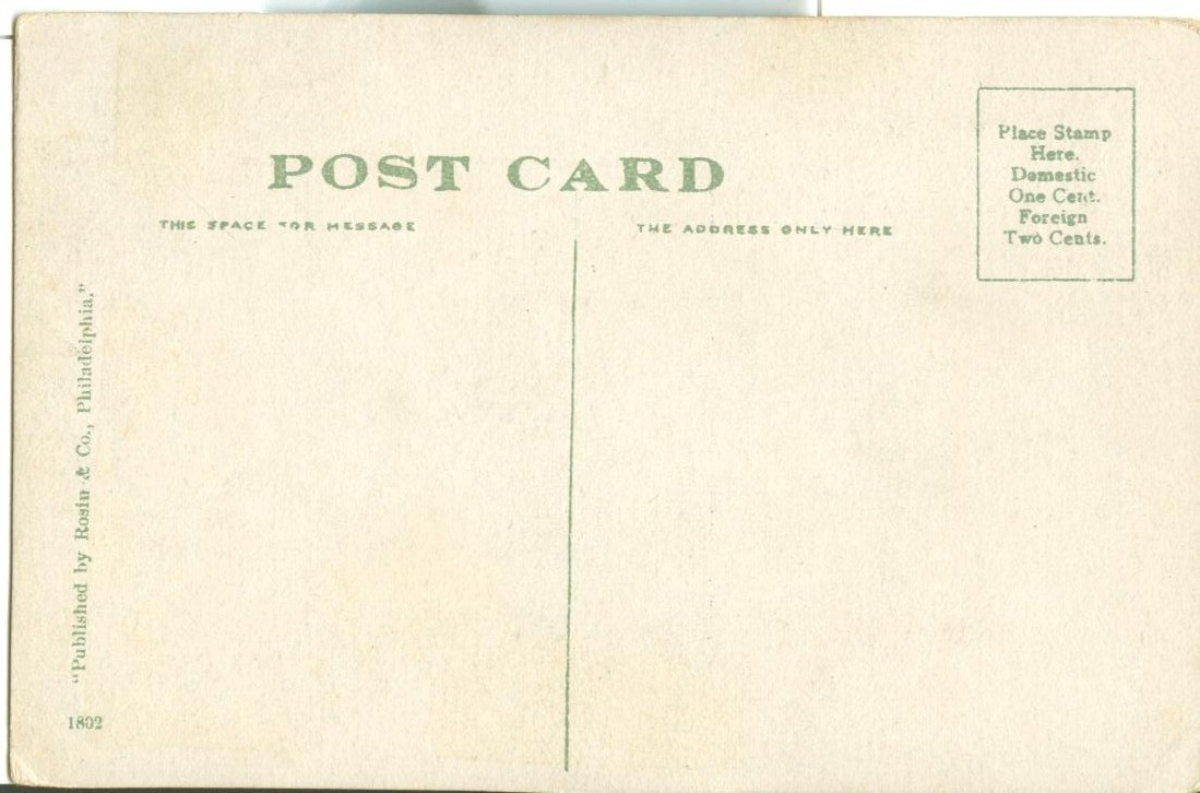 General view from Steel Arch Bridge, Niagara Falls, early 1900s unused Postcard