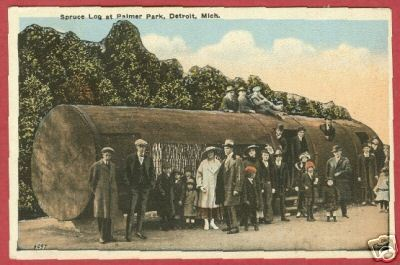 Primary image for Detroit MI Palmer Pk Log People Postcard Michigan BJs
