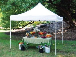 King Canopy 10 x 10 ft. Festival - Instant Cano... - $241.82