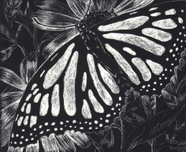 "Akimova: MONARCH BUTTERFLY, scratch paper, black and white, 5""x4"" - $7.00"
