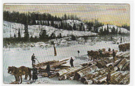 Logging Horse Sled Teams 1910 postcard - $6.39
