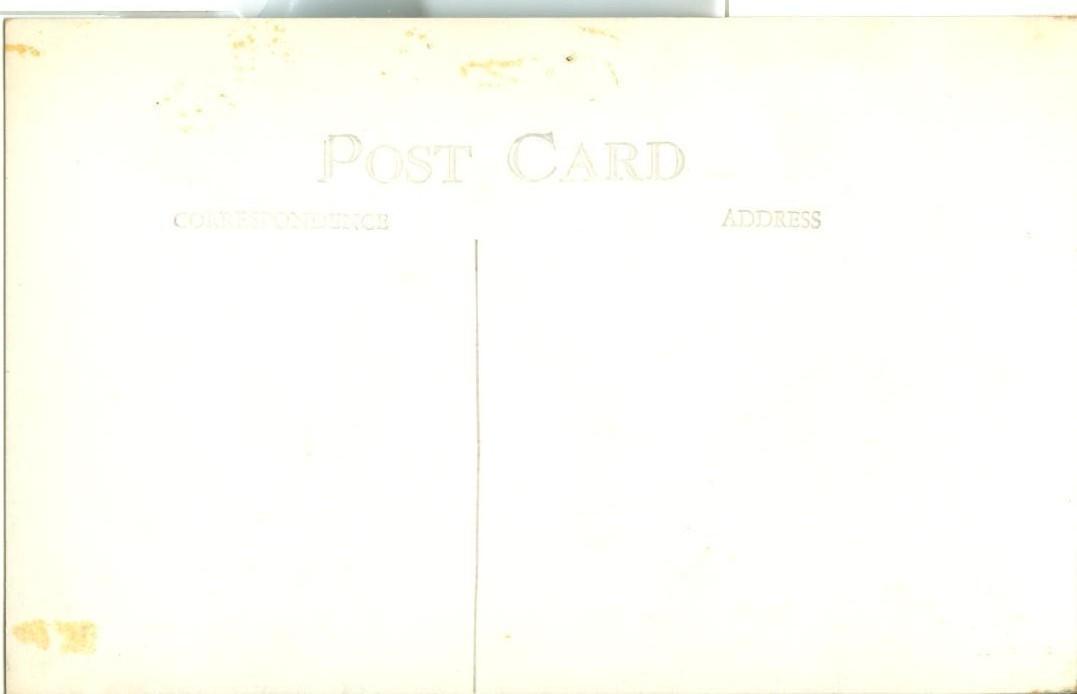 The History of the California Redwood Tree, unused Real Photo RPPC Postcard