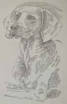 Weimaraner Dog Art Portrait #38 WORD DRAWING Kline adds your dogs name f... - $49.45