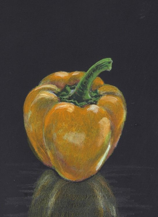 "Akimova: YELLOW BELL, food, pepper, still life, colored pencils,   5.5""x8.5"""