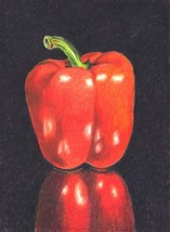 "Akimova: RED BELL, food, pepper, still life, colored pencils,   4.5""x6.5"" - $9.00"