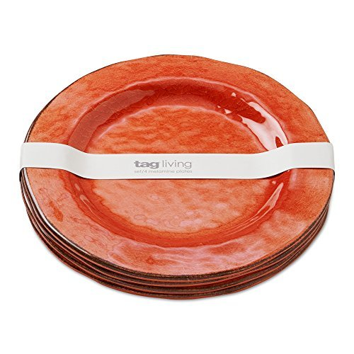 tag - Veranda Melamine Dinner Plate, Durable, BPA-Free and Great for Outdoor or  image 2