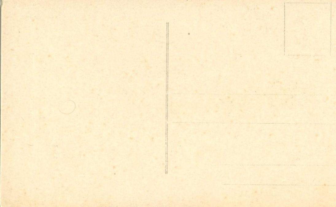 Italy, Bibbiena (Casentino), Via Berni, Palazzo Marcucci, early 1900s Postcard