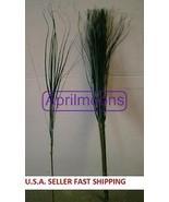 51 STEMS OF GREEN ONION GRASS WHOLESALE, WHOLESALE SILK FLOWERS, FREE SH... - $16.98