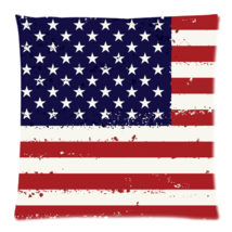 American flag Zippered Pillow Cases 18x18 (Twin... - $15.99