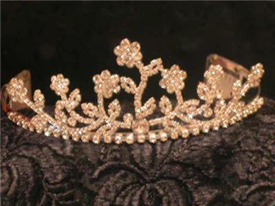 GARDEN OF EDEN SILVER PLATED AUSTRIAN CRYSTAL RHINESTONE BRIDAL PAGEANT TIARA