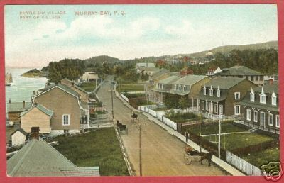 Primary image for Murray Bay PQ Quebec Village Canada Postcard BJs