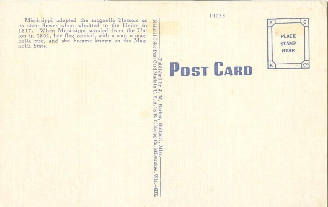 Mississippi State Flower, Magnolia, 1951 used Postcard
