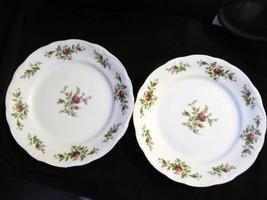 "Johann Haviland's Traditions ""Moss Rose"" Set of 2 Dinner Plates - $23.36"