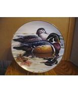 "Rod Lawrence's ""Wood Ducks"" in the American Waterbirds  - $37.39"