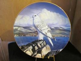 "Thomas J Hirata's Majesty of Flight, The Gyrfalcon "" Sentry of The North ""  - $22.43"