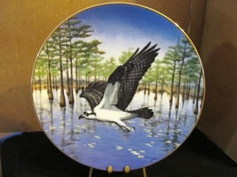"Thomas J Hirata's Majesty of Flight, The Osprey ""Commanding The Marsh "" - $22.43"