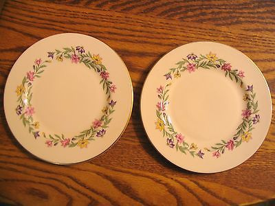 1 -rare! Pickard china Brocade ivory full size dinner plate