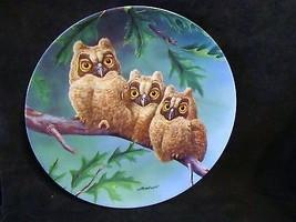 "Joe Thornbrugh's ""Three's Company:Long Eared"" series Baby Owls of N. Ame... - $25.23"